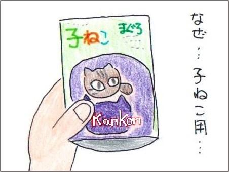 f:id:chai-ko:20180603213912j:plain