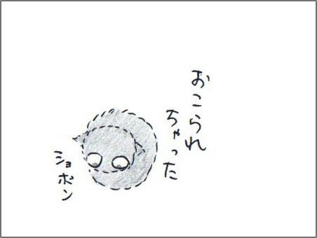 f:id:chai-ko:20180611203448j:plain