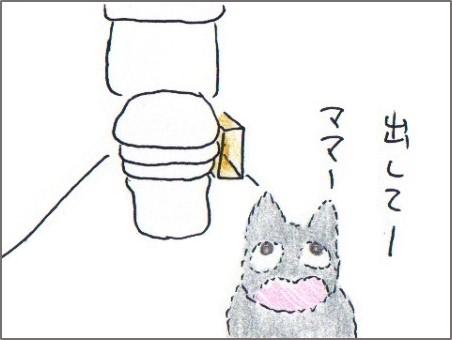 f:id:chai-ko:20180617201301j:plain