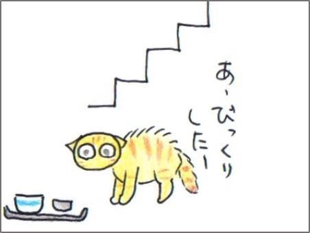 f:id:chai-ko:20180619204312j:plain