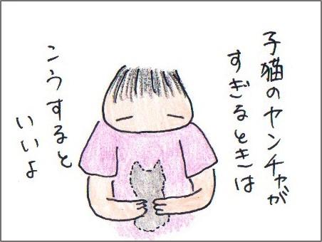 f:id:chai-ko:20180623120807j:plain