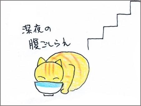 f:id:chai-ko:20180809193536j:plain