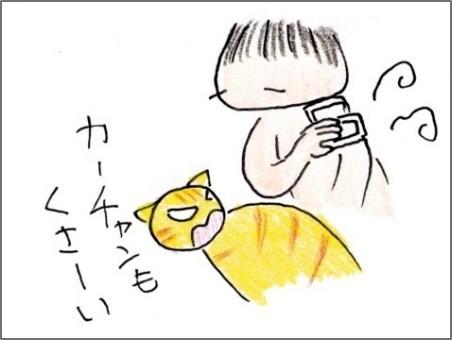 f:id:chai-ko:20180919202147j:plain