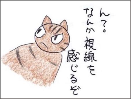 f:id:chai-ko:20181221202427j:plain