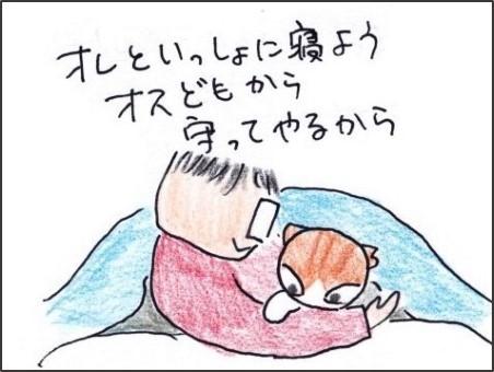 f:id:chai-ko:20190131201236j:plain