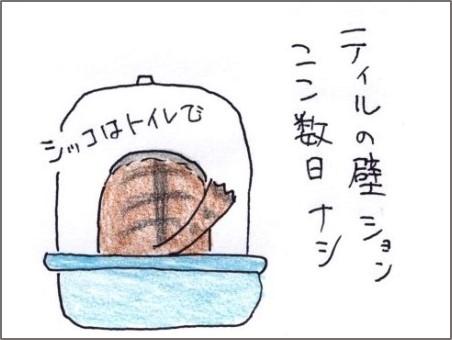 f:id:chai-ko:20190301202102j:plain