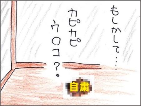 f:id:chai-ko:20190321200120j:plain