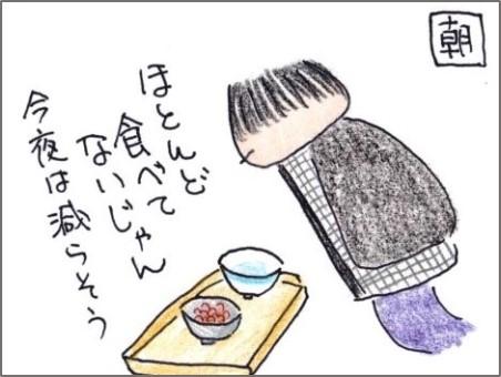 f:id:chai-ko:20190408201439j:plain