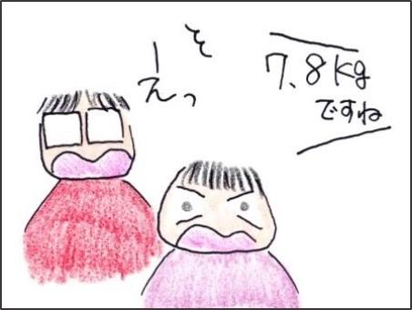 f:id:chai-ko:20190428205220j:plain