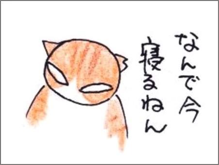 f:id:chai-ko:20190520204330j:plain