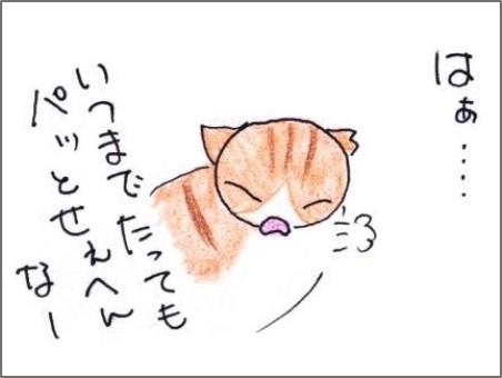 f:id:chai-ko:20190612200854j:plain