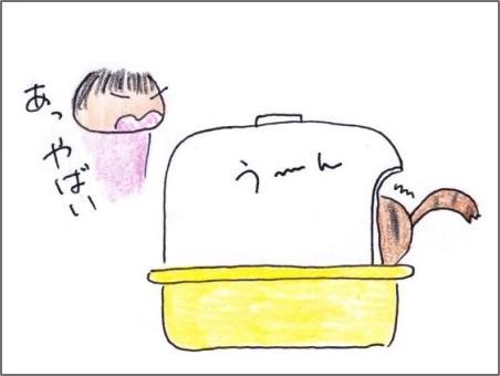 f:id:chai-ko:20190717201154j:plain