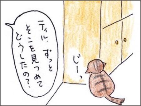 f:id:chai-ko:20190814205844j:plain