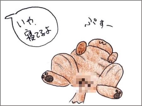 f:id:chai-ko:20190815204618j:plain