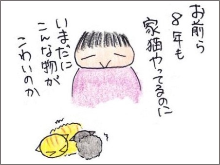 f:id:chai-ko:20190821200123j:plain