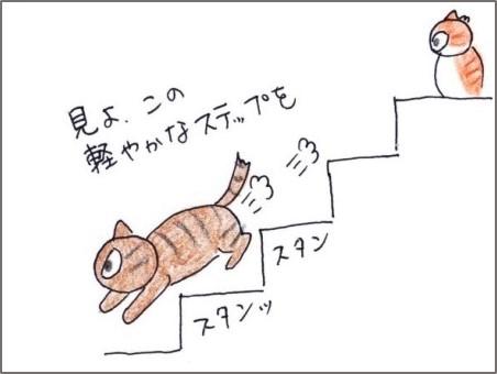 f:id:chai-ko:20191016201246j:plain