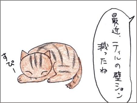 f:id:chai-ko:20191101193457j:plain