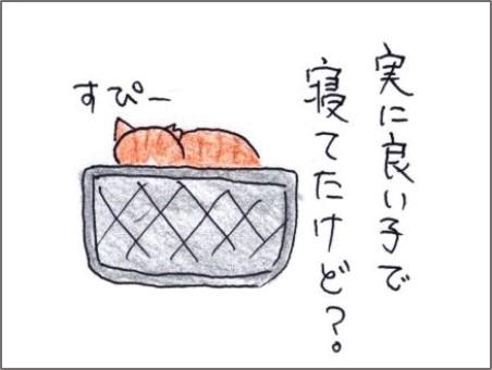 f:id:chai-ko:20191104191829j:plain