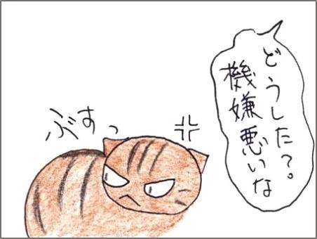 f:id:chai-ko:20200119192520j:plain