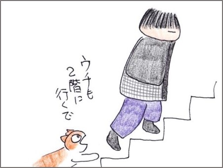 f:id:chai-ko:20200121201157j:plain