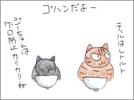f:id:chai-ko:20200311200806j:plain