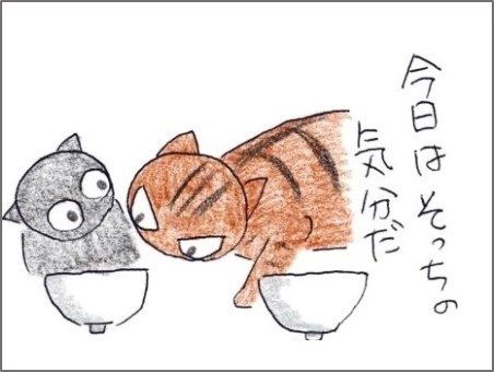 f:id:chai-ko:20200311200809j:plain