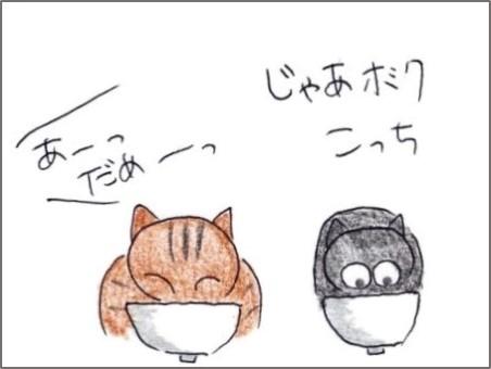f:id:chai-ko:20200311200811j:plain