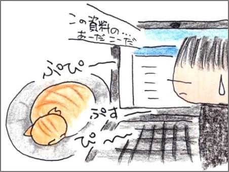 f:id:chai-ko:20200409194711j:plain