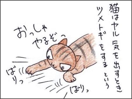 f:id:chai-ko:20200411180137j:plain