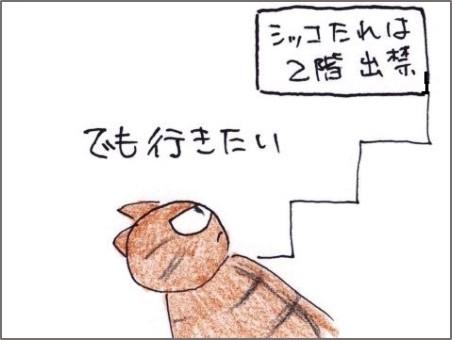 f:id:chai-ko:20200420195651j:plain