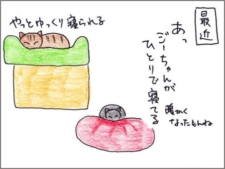 f:id:chai-ko:20200509185757j:plain