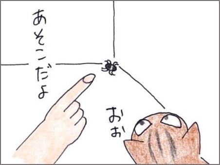 f:id:chai-ko:20200522180105j:plain