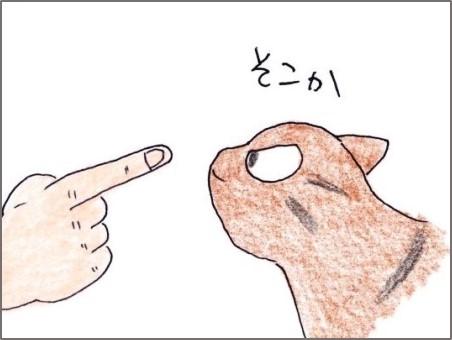 f:id:chai-ko:20200522180107j:plain