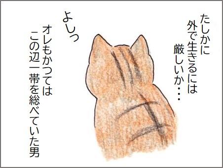 f:id:chai-ko:20200523182636j:plain