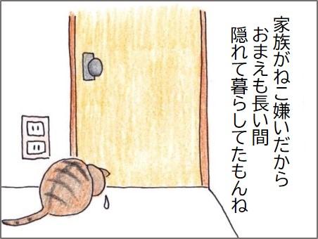 f:id:chai-ko:20200523183434j:plain