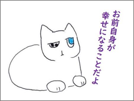 f:id:chai-ko:20200527210545j:plain