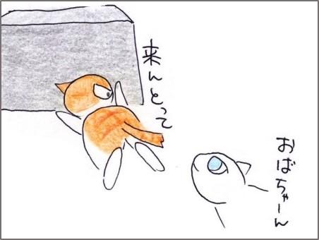 f:id:chai-ko:20200602202622j:plain