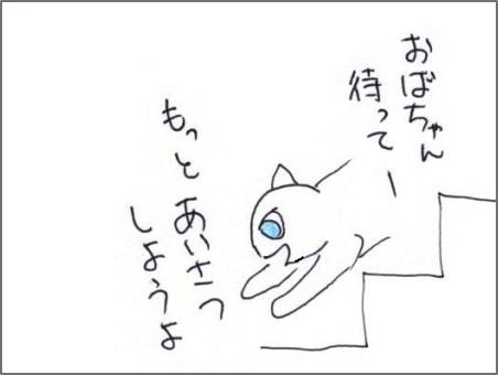 f:id:chai-ko:20200603205604j:plain