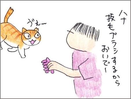 f:id:chai-ko:20200612200208j:plain