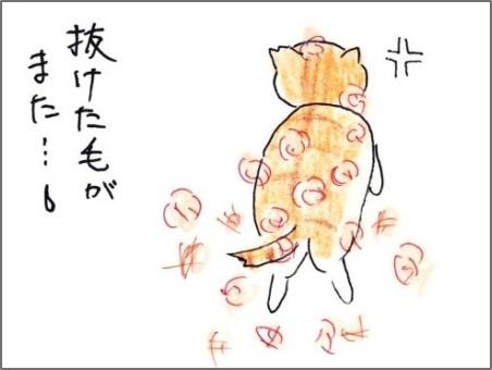 f:id:chai-ko:20200612200218j:plain