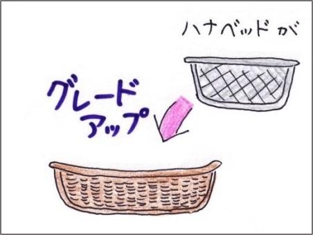 f:id:chai-ko:20200718184945j:plain
