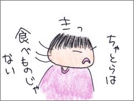 f:id:chai-ko:20200801190223j:plain