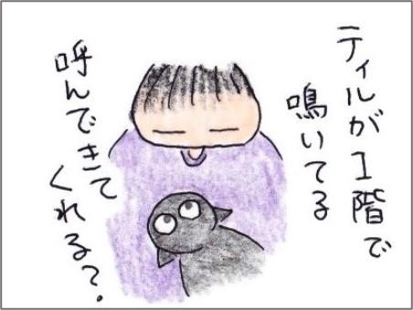 f:id:chai-ko:20200906180419j:plain