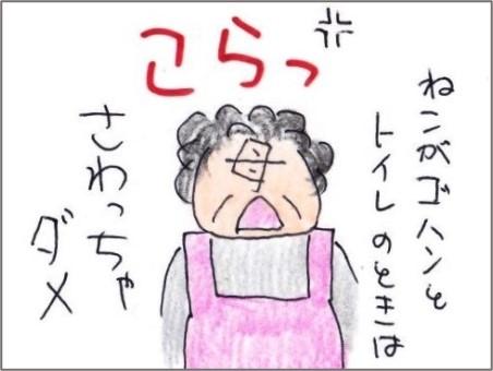 f:id:chai-ko:20200913142256j:plain