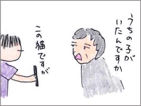 f:id:chai-ko:20200918195619j:plain