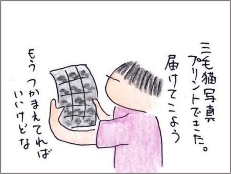 f:id:chai-ko:20200920201523j:plain