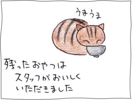 f:id:chai-ko:20200927184034j:plain