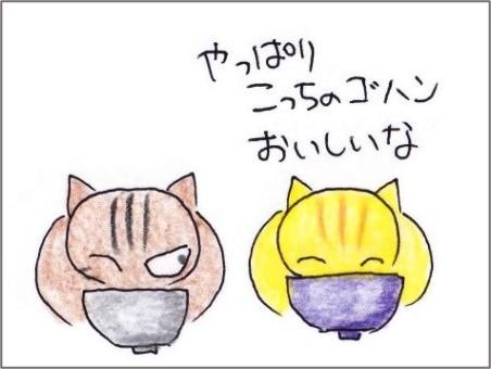 f:id:chai-ko:20201016194921j:plain