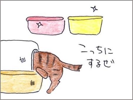 f:id:chai-ko:20201021194842j:plain