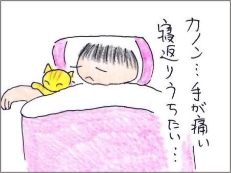 f:id:chai-ko:20201106201105j:plain